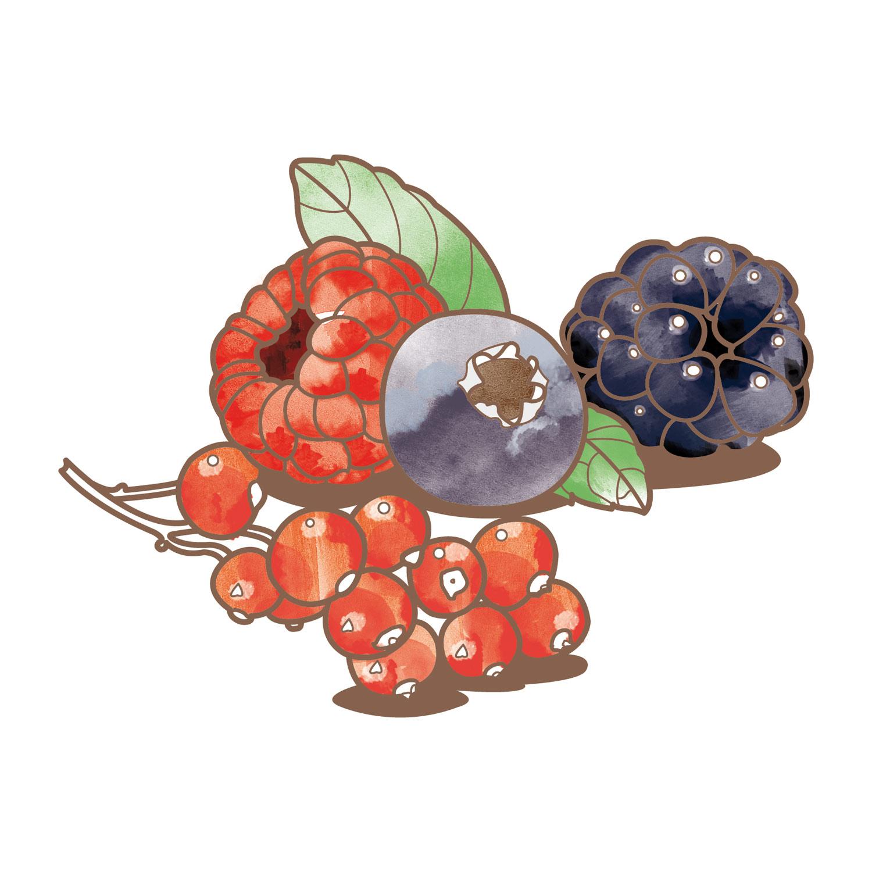 fruttidibosco